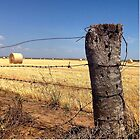 Our beautiful Australia - Buy a Bale and help a farmer by MattLawson