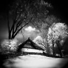 Infrared 9 by BKSPicture