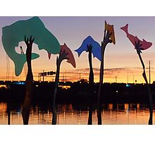 Sunset Art on the Fox River Photographic Print