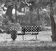 Park Bench in mono and checked by Sandra Caven