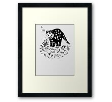 Spotted Tail Quoll- Dasyurus maculatus Framed Print