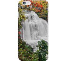 Ohio's Brandywine Falls iPhone Case/Skin
