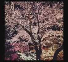 Sakura - Cherry Blossom - Kyoto Kids Clothes