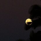 The Magic of the Moon. by MardiGCalero