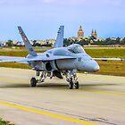 Swiss F18 Hornet by Bob Martin