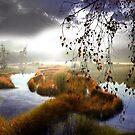 Floodland by Igor Zenin