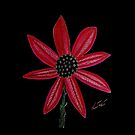 Red Flower by William Solis by Sarah Curtiss