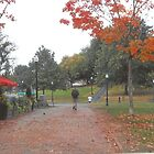 Autumn On The Common  by RobynLee