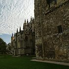 Strong Walls of Exeter Cathedral.......Devon uk by lynn carter