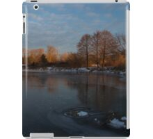 Icy Reflections With a Touch of Snow iPad Case/Skin