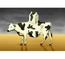 SURREALISM - Cow Product  Photographic Print