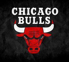 Chicago bulls apparel by killerclown