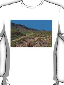 Desolate T-Shirt