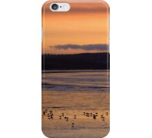 Golden Evening in Instow iPhone Case/Skin