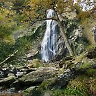 Powerscourt Waterfall & photographers  by Martina Fagan