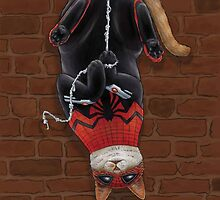 Cat Spiderman by wormlite