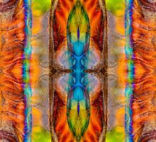 Great Spirit Abstract Pattern Artwork  by owfotografik