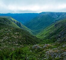 A hidden valley reveals itself on the West face of Cradle Mountain. by Nick Griffin