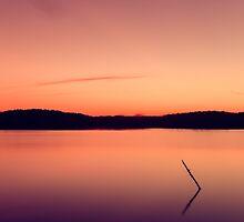 Stillness On the Lake by alyphoto