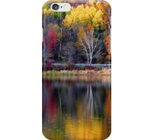 Autumn Sprinkle at Rose Valley Lake iPhone Case/Skin