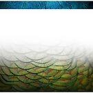 Peacock Duvet (panel gradient) by BadBehaviour