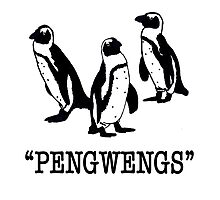 """Pengwengs"" Photographic Print"