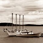 Boat in Sepia by virginian