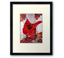 Bird on a Wall 2 Framed Print