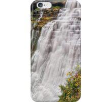 Brandywine Falls iPhone Case/Skin
