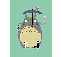 Miyazaki tribute Photographic Print