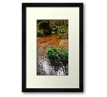 Little stream in autumn colors | landscape photography Framed Print