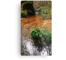 Little stream in autumn colors | landscape photography Metal Print