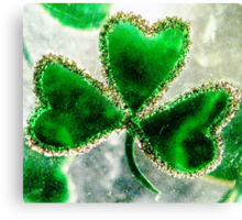 A Shamrock on Ice Canvas Print