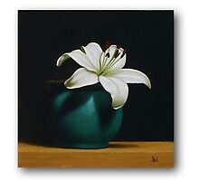 White Lily and Green Vase by Paul Coventry-Brown