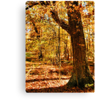 Color Me Fall... products Canvas Print