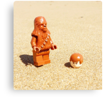 Chewy & Han Go To The Beach Canvas Print