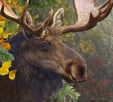 bull moose portrait amid aspen and spruce by R Christopher  Vest