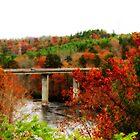 *French Broad River Bridge* by DeeZ (D L Honeycutt)