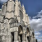 Chartres Cathedral ( 2 ) by Larry Lingard-Davis