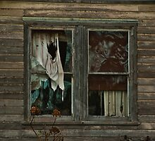 Neglected Old Window by DavidsArt