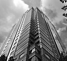 Corporate Babel by Scott Mitchell