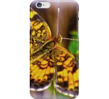 Southern Butterfly iPhone Case/Skin