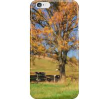 Enjoying The Autumn Shade iPhone Case/Skin