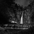 Waterfall Gully B&W by pablosvista2