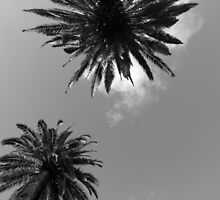 St Kilda Beach  by charles1008