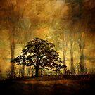 Peaceful Tree by PineSinger