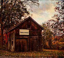 Field of Dreams by PineSinger