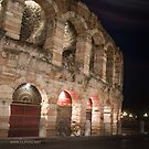 L'Arena at night, Verona, Italy by L Lee McIntyre