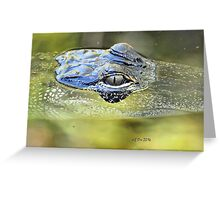 Gator Eye (Alligator mississippiensis) Greeting Card