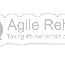 Agile Rehab  Sticker